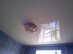 Бежевый натяжной потолок с потолочным карнизом в спалью Киселевск