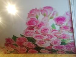 Фотопечать цветы на натяжном потолке - фото1