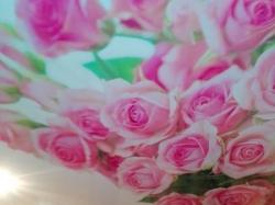 Фотопечать цветы на натяжном потолке - фото2
